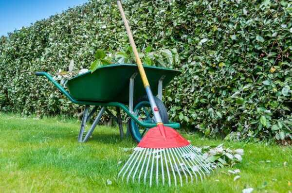 5 Things You Should Know Before Starting A Lawn Care Business