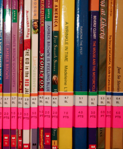 Accelerated Reading: A Skill Of Great Entrepreneurs