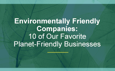 List of 22 Green or Ecological Businesses