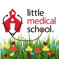 Start a Little Medical School franchise
